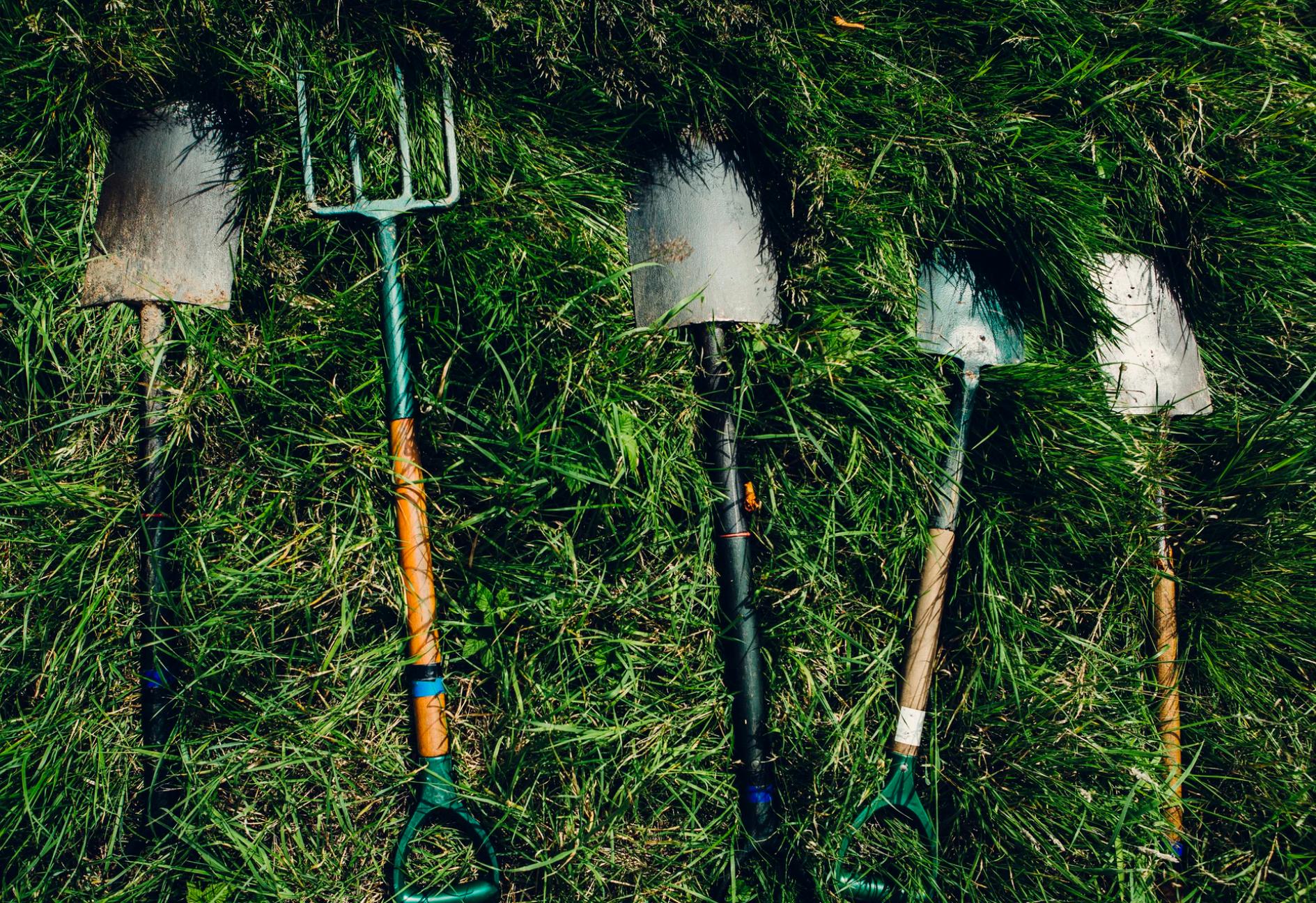 several shovels in grass